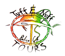 Tuff E Nuff | Eco Dive Shop and Tours Belize | Tours